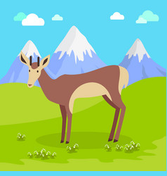 young deer in flat design vector image
