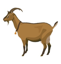 Brown goat side view isolated vector image