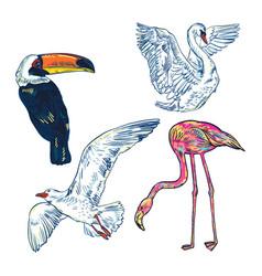 super set of cute cartoon birds vector image vector image