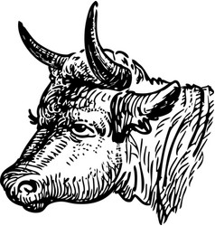 Freehand drawing head sad cow vector