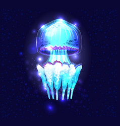 glowing transparent underwater a jellyfish vector image
