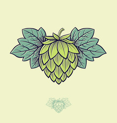 green hop cone engrawing beer brewing vector image