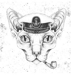 Hipster animal sphynx cat in captains cap vector