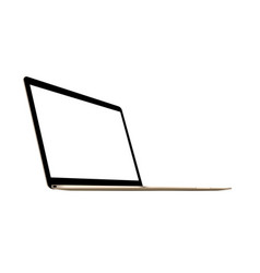 laptop gold mockup vector image
