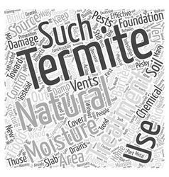 Natural Termite Treatment Word Cloud Concept vector