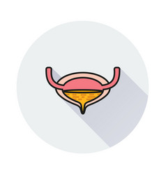Urinary bladder icon on round background vector