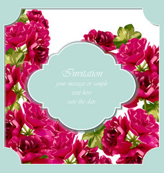 Vintage red roses card delicate summer vector