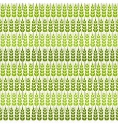 Green wheat seamless pattern vector