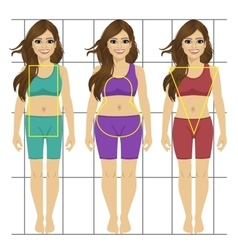 Different women s figures Three female body types vector image