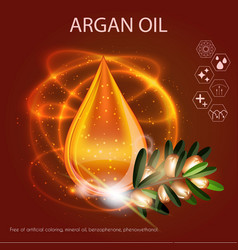 Argan oil serum essence 3d droplet with branch vector