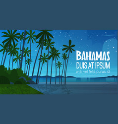 Bahamans sea shore beach after sunset beautiful vector