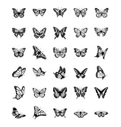 Butterfly solid icons set vector