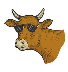 Cow animal in sunglasses sketch engraving vector