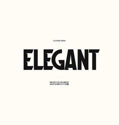 elegant font trendy typography vector image