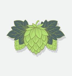 green hop cone engrawing beer brewing vector image