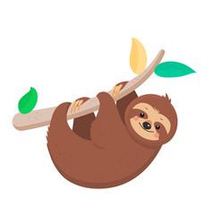 joyful sloth hanging on a branch vector image