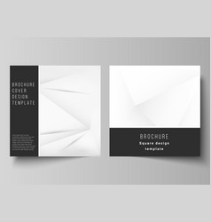 layout two square covers design vector image