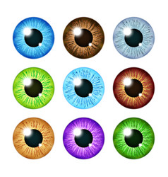 Realistic multi colored eyeball iris pupils set vector