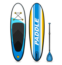 stand up paddle drawing vector image