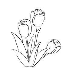 Tulip flower icon image vector