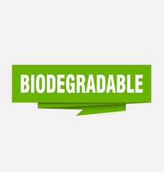 Biodegradable vector