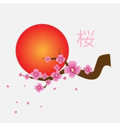 Branch of sakura blossoms vector image