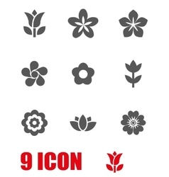 grey flowers icon set vector image