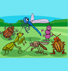 Insects and bugs funny cartoon characters group vector
