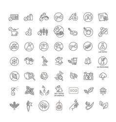 natural food flat line icons set vector image