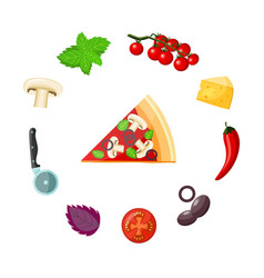 Pizza and ingredients set - colorful piece of vector
