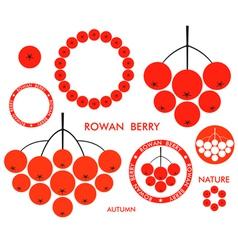 Rowan berry vector