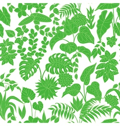 Tropic green pattern vector