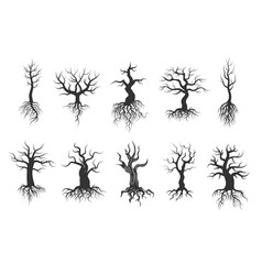 old tree silhouettes with roots set vector image