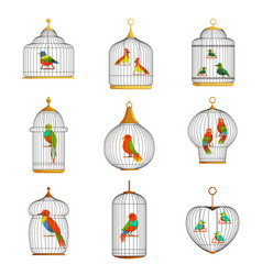 Colorful birds in cages set vector