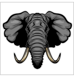 Elephant head Isolated on white vector