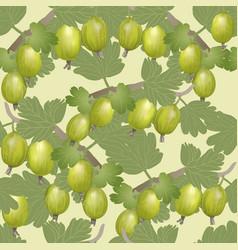 gooseberry seamless pattern vector image