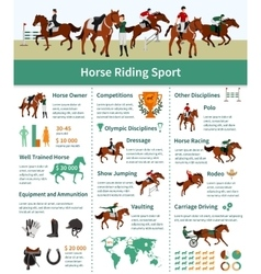 Horse Rising Infographics vector