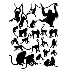 monkey detail silhouette vector image