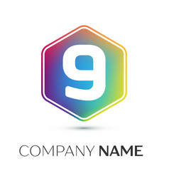 Number nine logo symbol in the colorful hexagonal vector