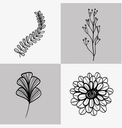 set branches with leaves and flower with petals vector image