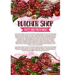 butcher shop sketch meat poster vector image