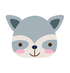 Colorful happy raccoon head wild animal vector