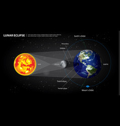 Lunar eclipses sun earth and moon vector