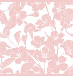 sakura japanese chinese cherry tree spring flowers vector image