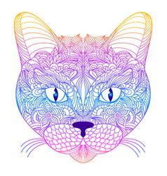 head of cat vector image vector image