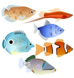 Aquarium fish-4 vector