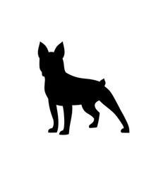 dog boxer icon vector image