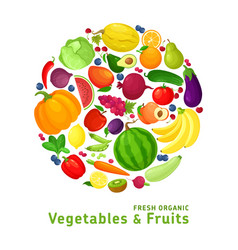 Fresh organic vegetables and fruits vector