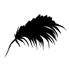 palm tree leaf silhouette vector image