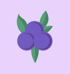 simple flat blueberry vector image